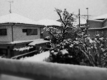 2013-01-14 16.19.40.jpg